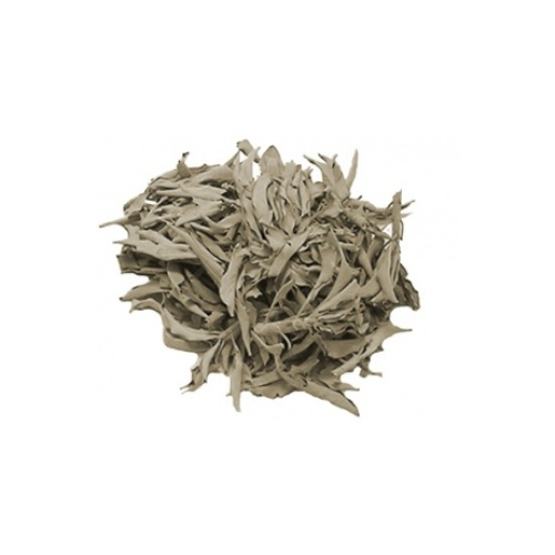Green Tree White Sage Leaves 25gr